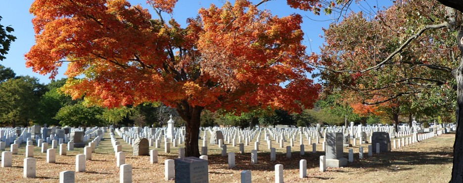 1-Day Mt. Vernon, Christ Church, Arlington Cemetery & Washington War Memorials Tour