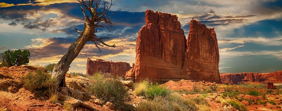 1-Day Las Vegas to Zion and Bryce Canyon National Park Tour