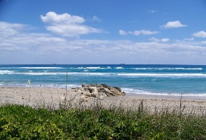 1-Day Miami to Fort Lauderdale, Lion Country Safari and West Palm Beach Tour