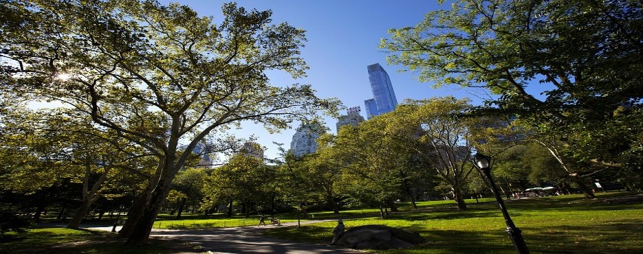 1-Day New York to Lavender by the Bay, Essex Town and Long Island Tour