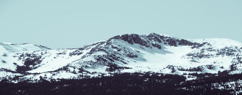 1-Day Seattle to Mount Rainier National Park Tour
