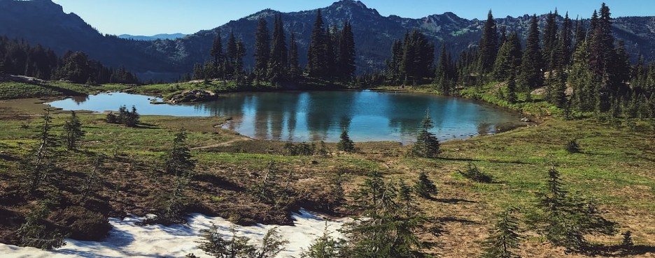 2-Day Seattle to Mount Rainier NP and Olympic National Park Tour