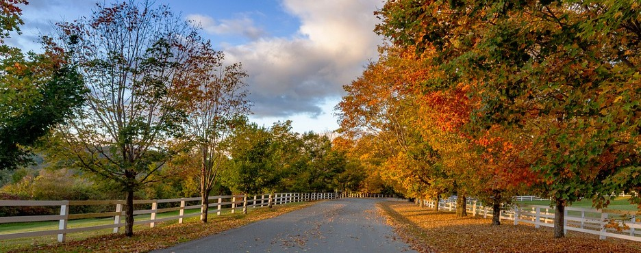 2-Day New York to Vermont Fall Foilage, The Lincoln Family Home and Stratton Gondola Ride Tour