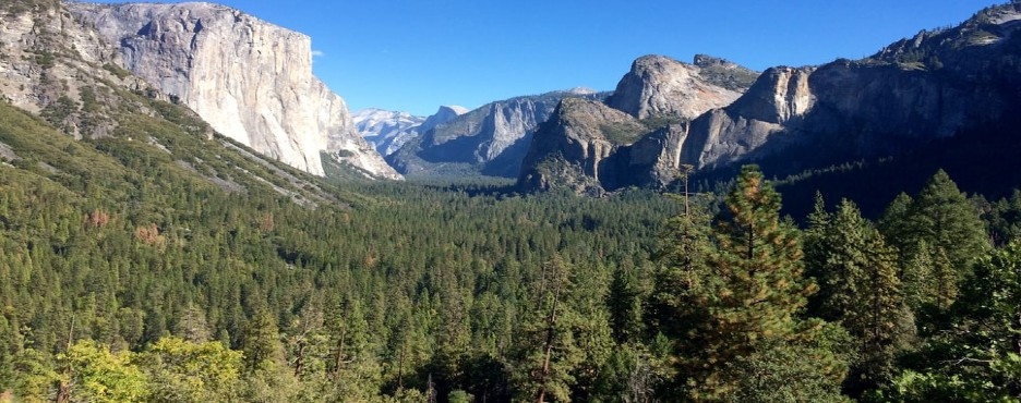 3-Day Los Angeles to Yosemite National Park and San Francisco City Tour