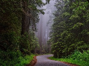 3-Day San Francisco to Redwood National Forest, Crater Lake, Napa Valley and Burney Falls Tour