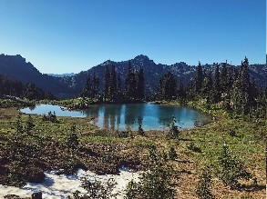 3-Day Seattle to Olympic National Park, Hurricane Ridge, Mount Rainier National Park and Wonderland Trail Tour (Free airport Pickup)