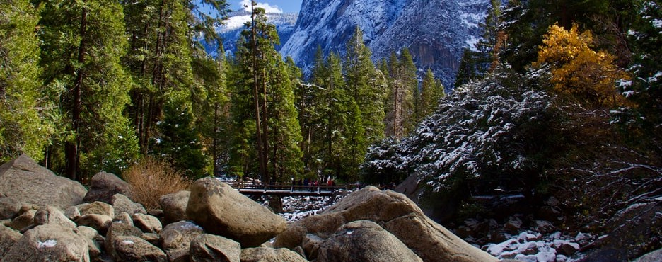 4-Day San Francisco to Yosemite and Los Angeles Tour (Free Airport Pickup - LAX OUT)