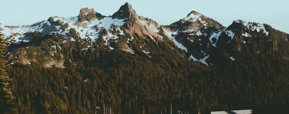 4-Day Seattle to Mount Rainier National Park, Olympic National Park and Seattle City Sightseeing Tour (Free Airport Pickup)