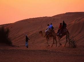 4.5 Hours Marrakech to Palm Grove Quad biking and Camel Riding Tour