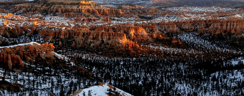 5-Day Los Angeles/Las Vegas to Salt Lake City, Antelope, Bryce Canyon, Yellowstone National Park and Grand Canyon West Rim Tour  - SLC OUT