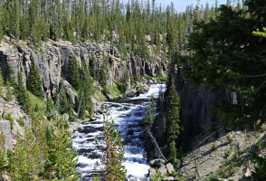 5-Day Salt Lake City to Yellowstone National Park, Grand Teton National Park, Jackson and Salt Lake City In-depth Tour