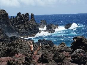 7-Day Honolulu to Oahu, Pearl Habor, Little Circle Island, Polynesian Cultural Center, Big Island, Maui Island and Kapalua Bay Tour (Free Airport Pickip)