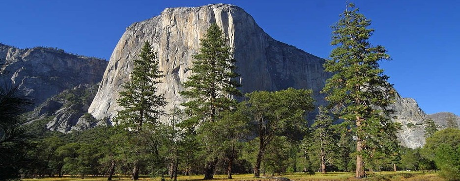 7-Day San Francisco to Yosemite National Park and West Coast Theme Parks Tour (Free Airport Pickup - LAX OUT)