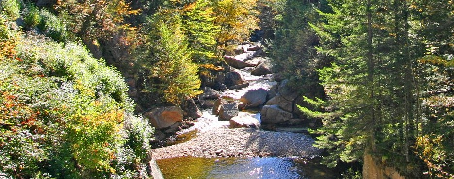 4-Day New York to Boston, White Mountains Forest, Franconia Notch State Park and New Hampshire Fall Foliage Tour