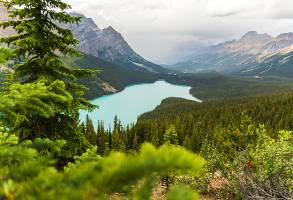1-Day Calgary to Banff National Park Hike and Sightseeing Tour