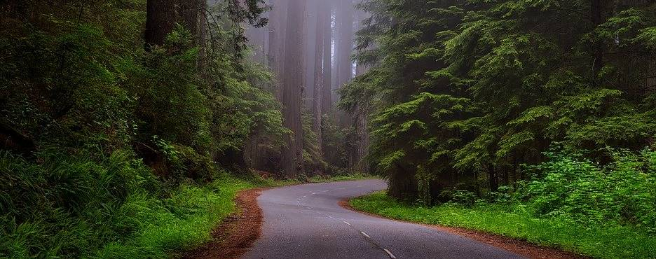 3-Day San Francisco to Napa Valley, Redwood National Forest and Crater Lake National Park Tour